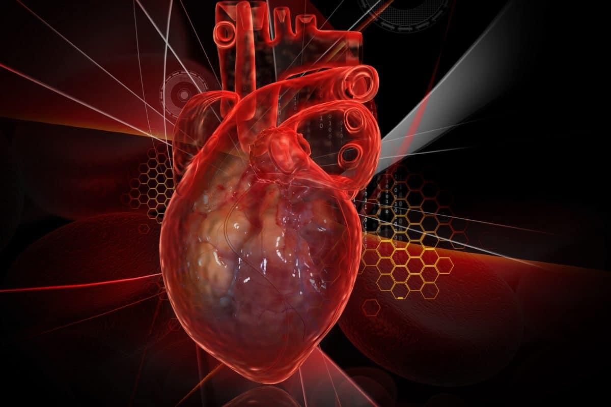 Serce jednokomorowe u dziecka