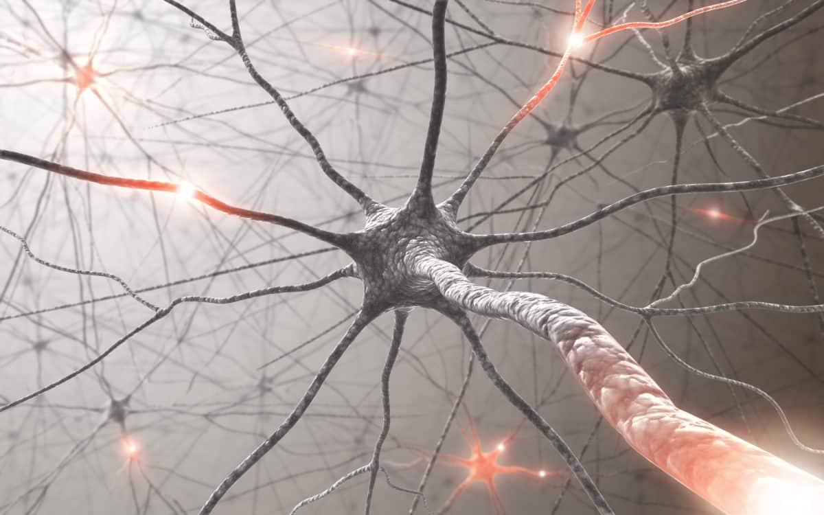 Układ nerwowy wcześniaka