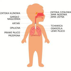 Infekcje dróg oddechowych mogą nawracać