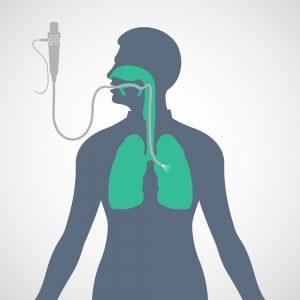 Spirometria i bronchoskopia to główne badania diagnostyczne w chorobach układu oddechowego.