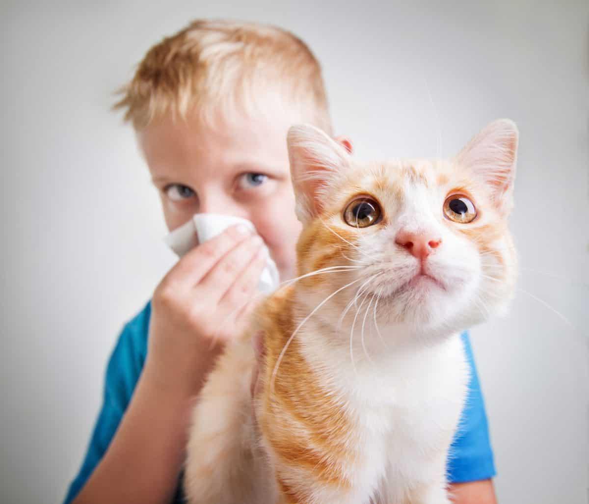 Alergie - konsekwencje, metody leczenia