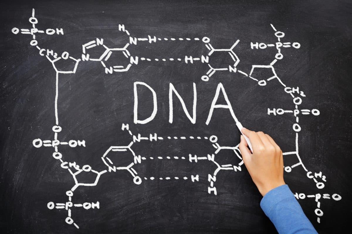 Mechanizm dziedziczenia - na czym polega?