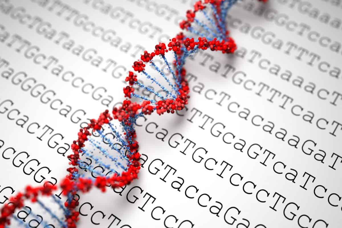 Genom i gen - jest między nimi zasadnicza różnica.